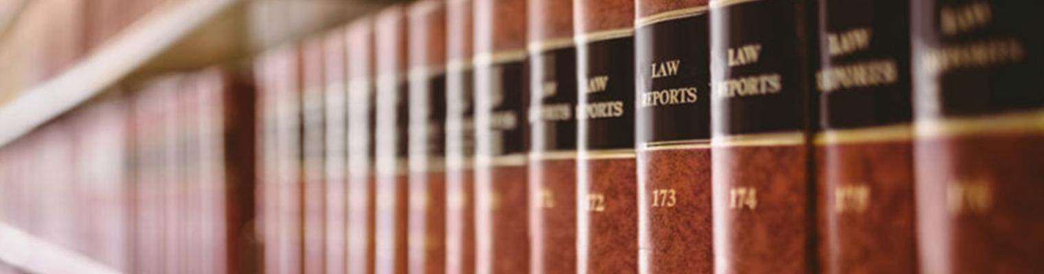 описание изображения Юристы «Патронуса» в очередной раз защитили права ребёнка с инвалидностью